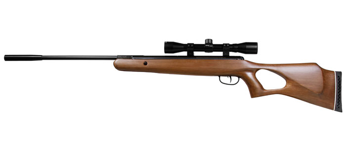 selecting the best air rifle