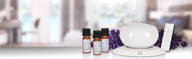 What Are Ceramic Diffuser You Can Buy These Ceramic Diffusers Online!