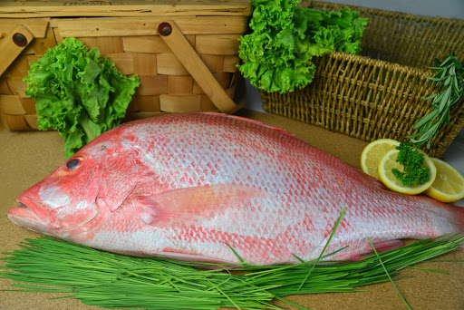 fresh seafood supplier singapore
